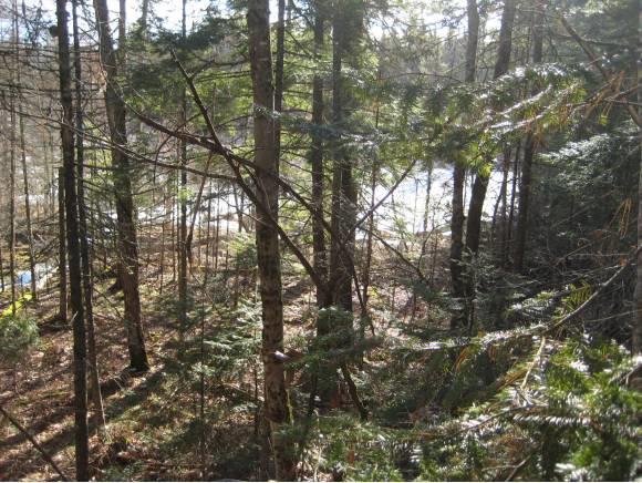 21 Lyndsay Lane, Tuftonboro, NH 03850 (MLS #4148153) :: Keller Williams Coastal Realty