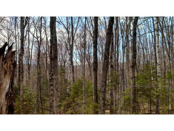 348 Erfreulichblick Circle, Stamford, VT 05352 (MLS #4330411) :: The Hammond Team