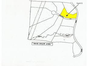 1 Brook Hollow Road, Belmont, NH 03220 (MLS #4515998) :: Lajoie Home Team at Keller Williams Realty