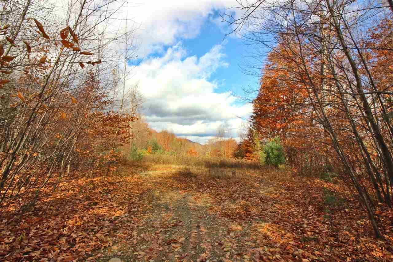 272 Twenty Acre Wood Road - Photo 1