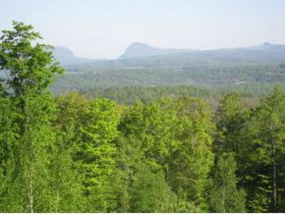207 Bear Path Lane Lane #8, Burke, VT 05832 (MLS #4756267) :: The Gardner Group