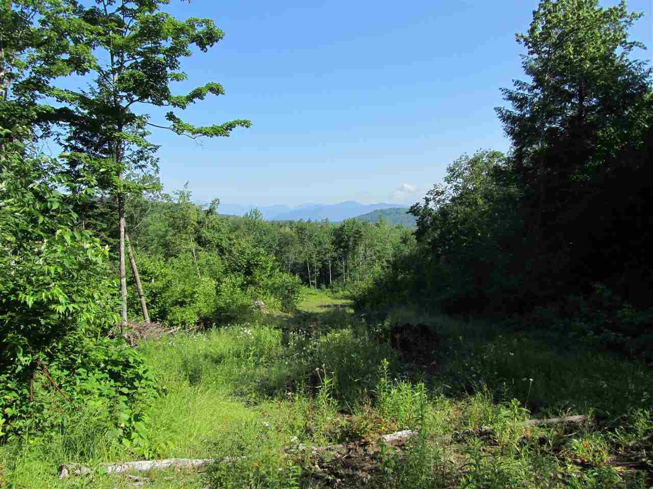 0 Stewart/Foss Mountain Road - Photo 1