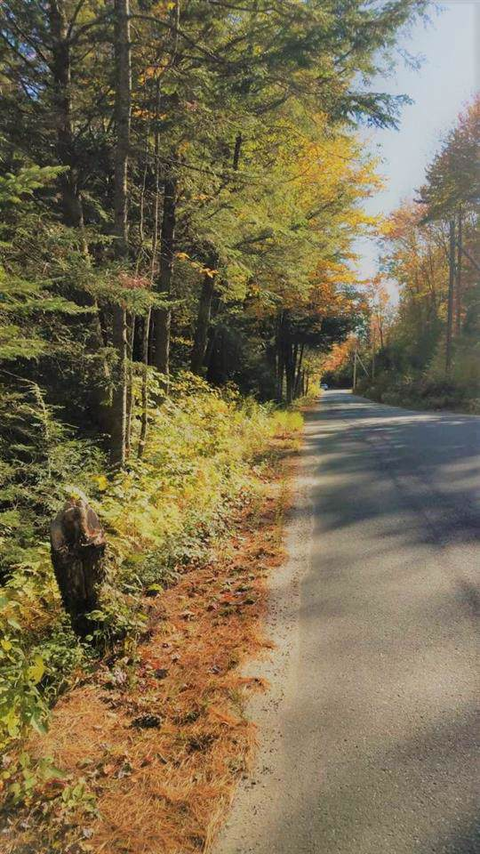 Lot 0769 Wild Meadow Road, Grafton, NH 03240 (MLS #4782315) :: Keller Williams Coastal Realty