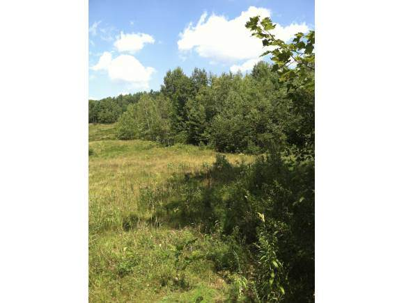 5 Caterall Road #5, Lisbon, NH 03585 (MLS #4803970) :: Signature Properties of Vermont