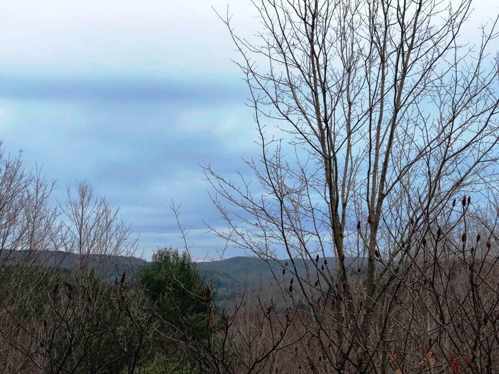 478 Justin Morrill Highway - Photo 1