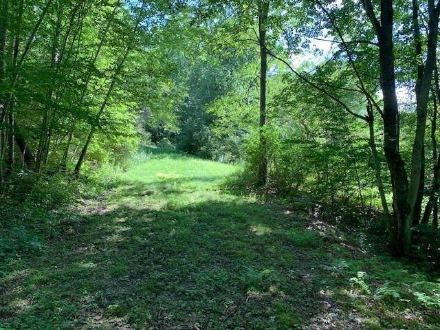 0 West Sandgate Road, Sandgate, VT 05250 (MLS #4875259) :: Signature Properties of Vermont