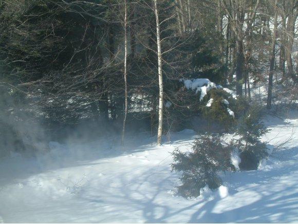 242 Rockingham Road, Derry, NH 03038 (MLS #2756127) :: Signature Properties of Vermont