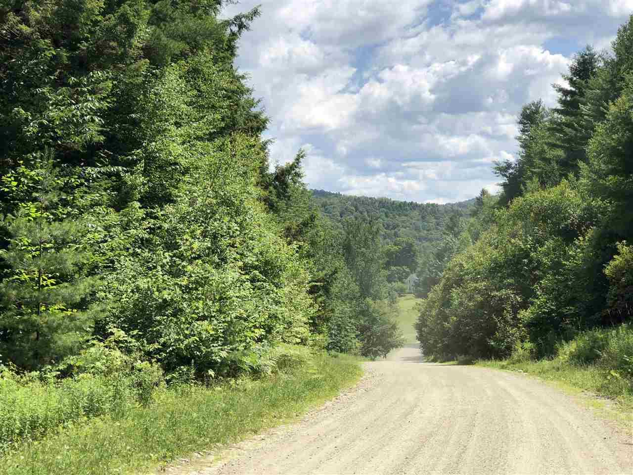 Butternut Hill Road - Photo 1