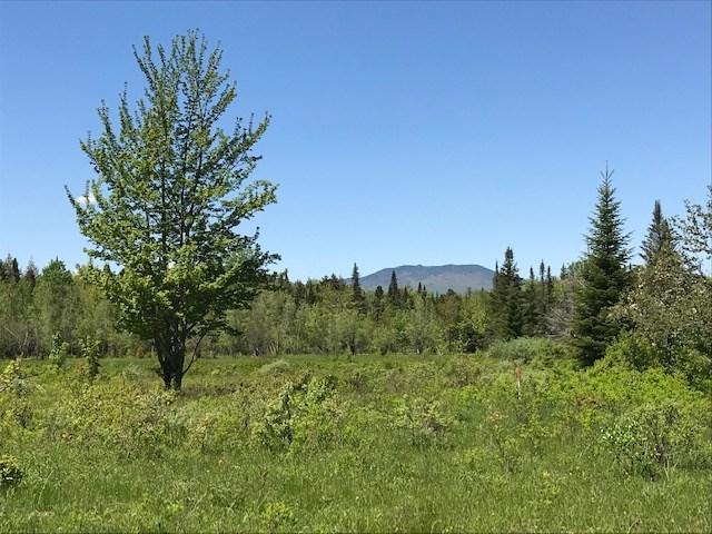0 Robtoy Road #3, Lowell, VT 05847 (MLS #4724579) :: The Gardner Group