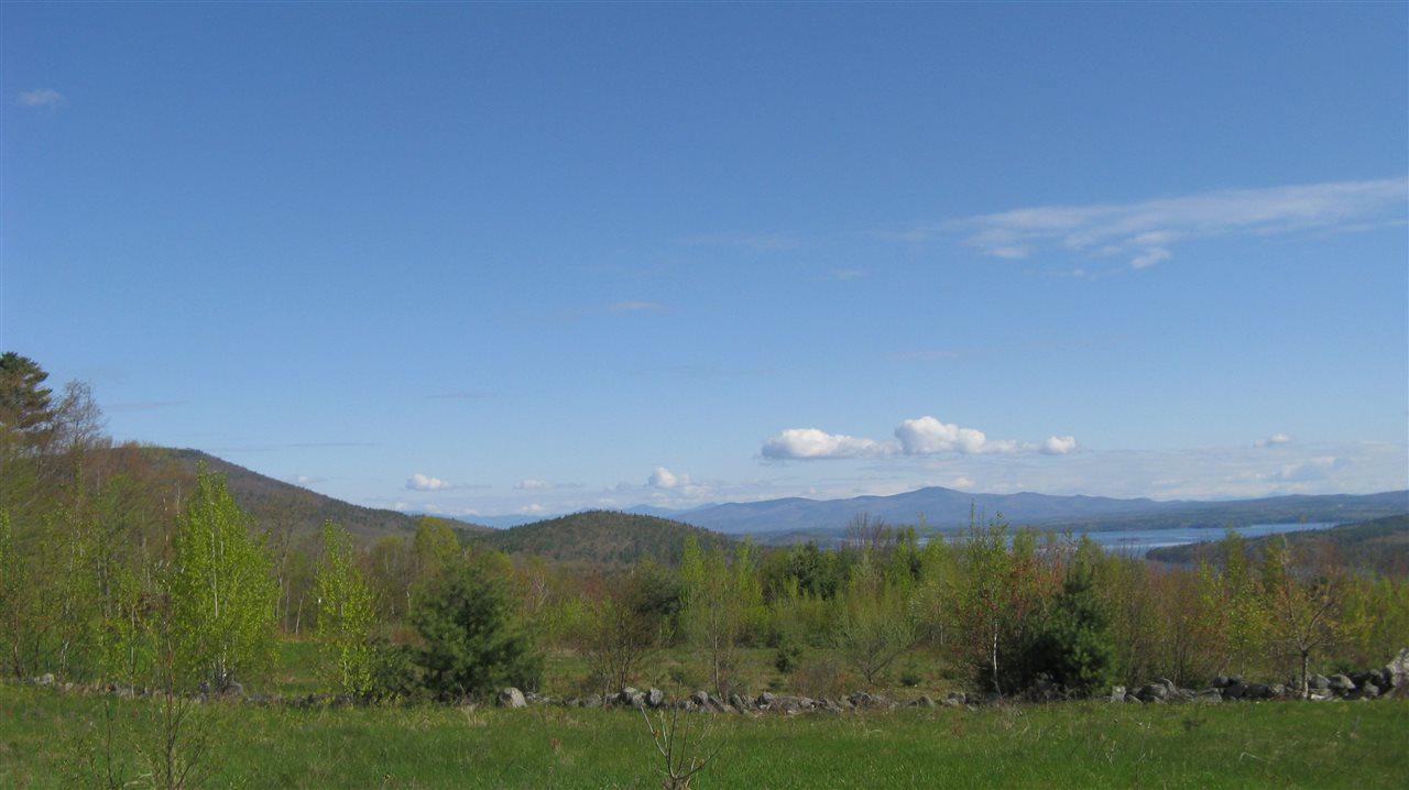 Lot 12-2 Alton Mountain Road - Photo 1