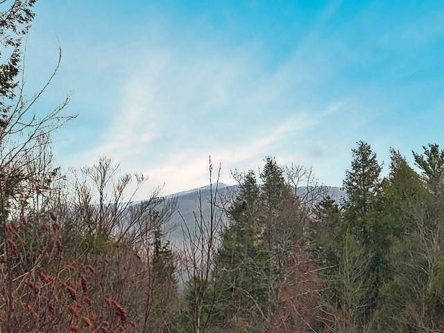 Seven Sisters Circle #10, Campton, NH 03223 (MLS #4801981) :: Signature Properties of Vermont