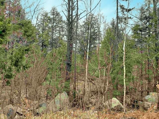 Seven Sisters Circle #8, Campton, NH 03223 (MLS #4801987) :: Signature Properties of Vermont