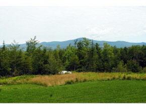 Lot 7 Farm Pond Lane, Tuftonboro, NH 03816 (MLS #4357347) :: The Hammond Team