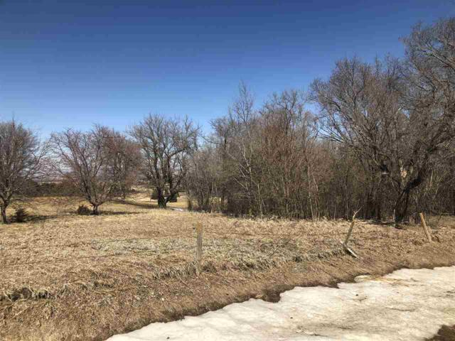 TBD 836 1/2 Road, Battle Creek, NE 68701 (MLS #180978) :: Berkshire Hathaway HomeServices Premier Real Estate