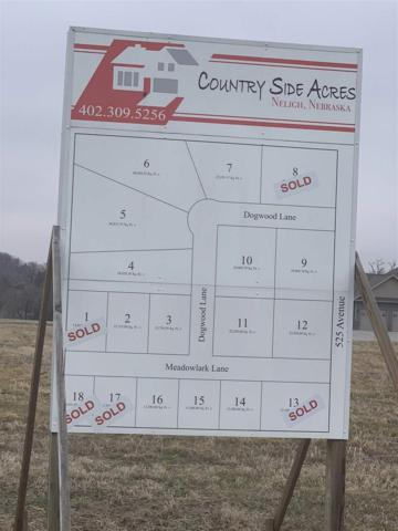 TBD Dogwood Lane, Neligh, NE 68756 (MLS #190058) :: Berkshire Hathaway HomeServices Premier Real Estate
