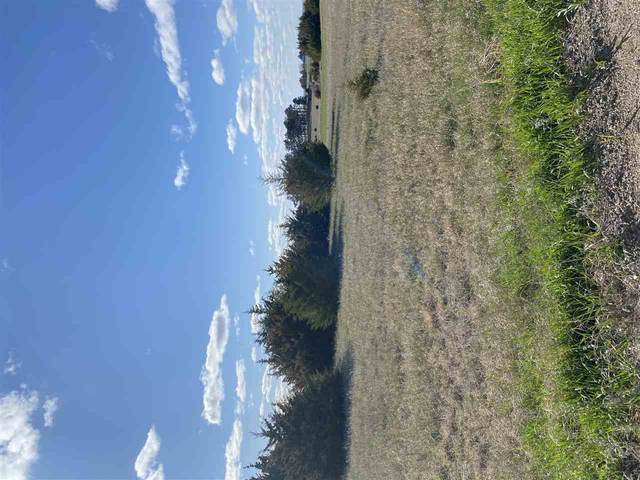 2020 Evergreen Hill Drive, Battle Creek, NE 68715 (MLS #210303) :: kwELITE