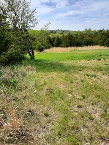 TBD Devils Nest, Crofton, NE 68730 (MLS #210422) :: kwELITE
