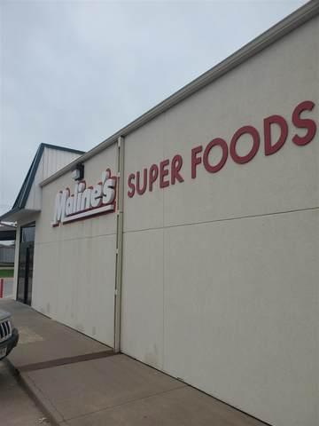 100 W County Rd, Sutherland, NE 69165 (MLS #210819) :: kwELITE