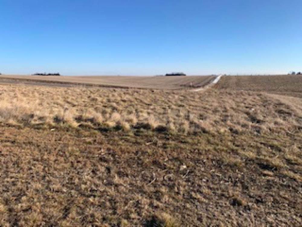 612 Nebraska Drive - Photo 1