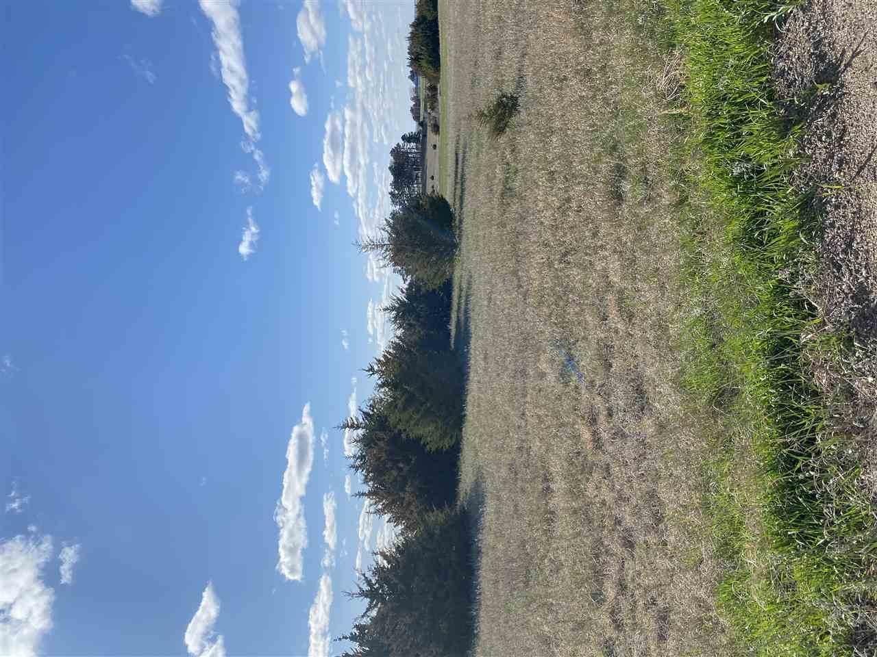 2020 Evergreen Hill Drive - Photo 1