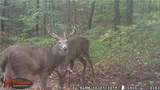 27600 Side State Rd 328 - Photo 3