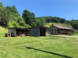 433 Narrow Run Road - Photo 14