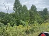 38650 Pumpkin Vine Ridge - Photo 6