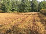 10008 Cable Line Road - Photo 24