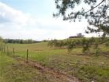 1762 Ashby Ridge Road - Photo 29