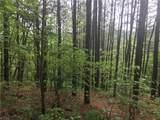 White Oak - Photo 10