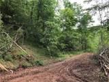 White Oak - Photo 3