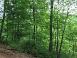 White Oak - Photo 5