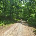 Elba Hill Rd. Road - Photo 3