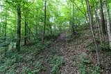47867 Cat S Run Road - Photo 14