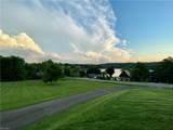 Buckhorn Drive Drive - Photo 17