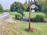 10735 Cottage Hill Lane - Photo 31