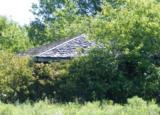 6950 Ridge Road - Photo 16