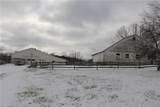 Mennonite - Photo 1