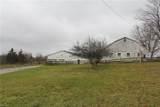 Mennonite - Photo 2