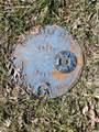 2667 Progress Ridge Road - Photo 8