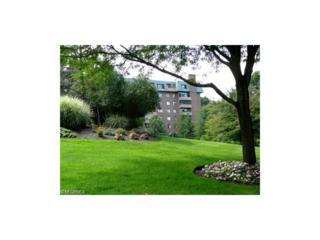 5200 Three Village Dr 3G, Lyndhurst, OH 44124 (MLS #3868267) :: The Crockett Team, Howard Hanna