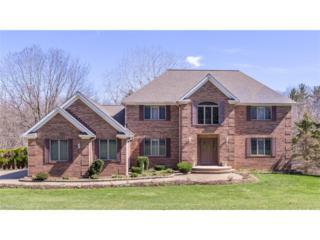 12971 Sperry Rd, Chesterland, OH 44026 (MLS #3888472) :: The Crockett Team, Howard Hanna