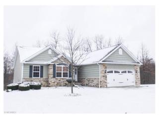 5949 Quarry Lake Dr SE, East Canton, OH 44730 (MLS #3877347) :: Keller Williams Legacy Group Realty