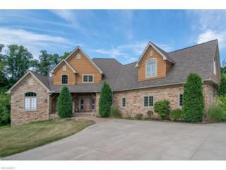12430 Falcon Ridge Rd, Chesterland, OH 44026 (MLS #3885744) :: The Crockett Team, Howard Hanna