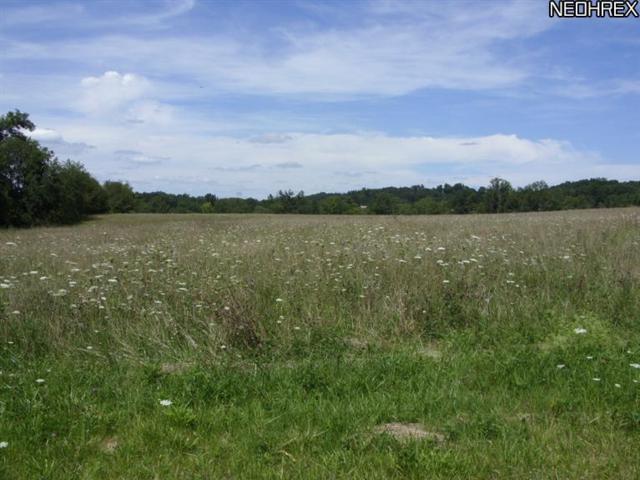56566 Vocational Rd, Byesville, OH 43780 (MLS #3454588) :: Keller Williams Chervenic Realty