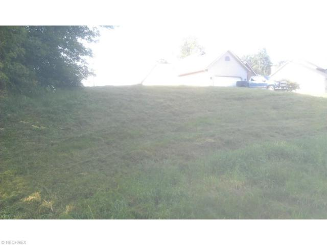 Dauphin Dr NE, Canton, OH 44721 (MLS #3741285) :: Tammy Grogan and Associates at Cutler Real Estate
