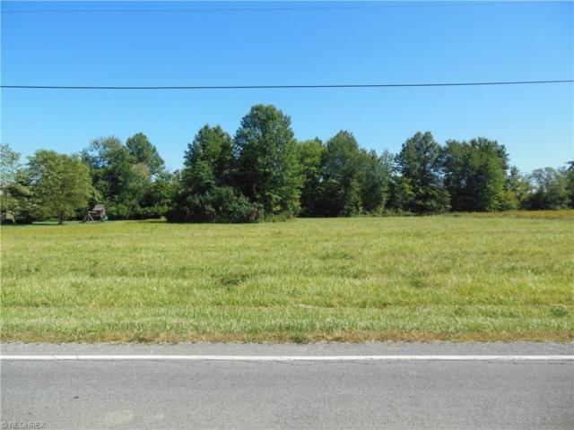 Pyle Rd, Oberlin, OH 44074 (MLS #3749752) :: Tammy Grogan and Associates at Cutler Real Estate