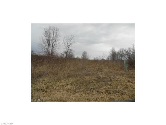 Sageberry Dr, North Lima, OH 44452 (MLS #3752048) :: Tammy Grogan and Associates at Cutler Real Estate