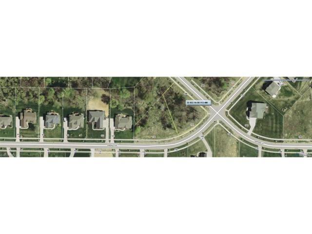 134 Sapphire Ln, Streetsboro, OH 44241 (MLS #3766910) :: Tammy Grogan and Associates at Cutler Real Estate