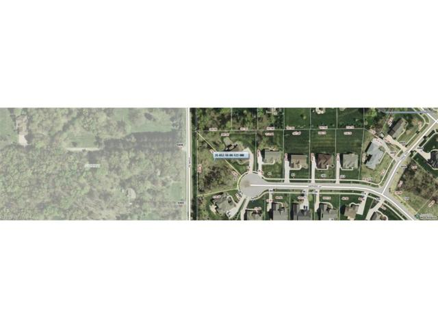 63 Sapphire Ln, Streetsboro, OH 44241 (MLS #3766912) :: Tammy Grogan and Associates at Cutler Real Estate